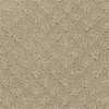 STAINMASTER PetProtect Feature Buy Stone House Cut and Loop Indoor Carpet