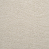 STAINMASTER Active Family Rutherford Raw Silk Cut and Loop Indoor Carpet