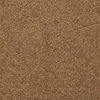 STAINMASTER Active Family Influential Chestnut Textured Indoor Carpet