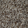 STAINMASTER Active Family Cinema Boca Textured Indoor Carpet