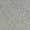 STAINMASTER Active Family Special Occasion Bluebud Textured Indoor Carpet