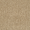 STAINMASTER Active Family Informal Affair Tango Textured Indoor Carpet