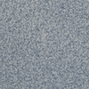 STAINMASTER Active Family Informal Affair Carefree Textured Indoor Carpet