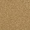 STAINMASTER Active Family 12-ft Informal Affair 112 Carpet Dazzle Textured Indoor Carpet