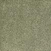 STAINMASTER TruSoft Pleasant Point Wild Rice Textured Indoor Carpet