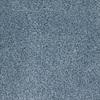 STAINMASTER TruSoft Pleasant Point Radiant Textured Indoor Carpet