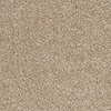 STAINMASTER TruSoft Shafer Valley Reverse Textured Indoor Carpet