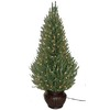 Holiday Living 4-ft Indoor/Outdoor Spruce Pre-lit Decorative Artificial Tree with 150-Count Clear Lights