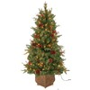 Holiday Living 4-ft Indoor/Outdoor Fir Pre-lit Decorative Artificial Tree with 150-Count Clear Lights
