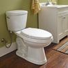 AquaSource Dreyton White 1.28-GPF (4.85-LPF) 12-in Rough-in WaterSense Elongated 2-Piece Comfort Height Toilet
