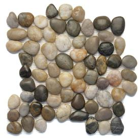 Solistone Anatolia Pebbles Multicolor Natural Mosaic Wall Tile (Common: 12-in x 12-in; Actual: 12-in x 12-in)