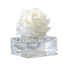 PEABODY & PAISLEY 3.38 oz White Tea Liquid Air Freshener