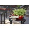 Garden Treasures Rectangle End Table