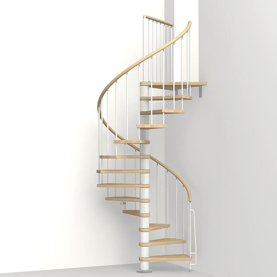 Shop Arke 3 Ft 11 In Phoenix White Powder Coat Finish Interior Spiral Stairca