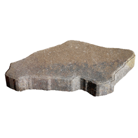 allen + roth Cassay 18-in x 12-in Driftwood Canyon Patio Stone (Actuals 18-in W x 12-in L)
