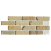 Brickweb Brickweb 10.5-in x 28-in Alamo Sunrise Panel Brick Veneer