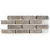 Brickweb Brickweb 10.5-in x 28-in Rushmore Panel Brick Veneer