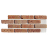 Brickweb Brickweb 10.5-in x 28-in Dixie Clay Panel Brick Veneer