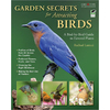 Garden Secrets for Attracting Birds