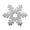 Northlight Sienna Lighted Snowflake Hanging Outdoor Christmas Decoration with White Incandescent Lights
