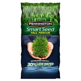 Pennington Smart Seed 20-Lb Tall Fescue Seed 2149601718