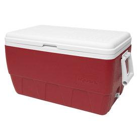 Shop Igloo 52 Quart Plastic Chest Cooler At Lowes Com