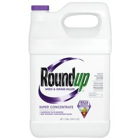 Roundup Super Concentrate 1-Gallon Weed And Grass Killer ...