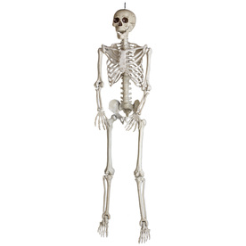 display product reviews for skeleton