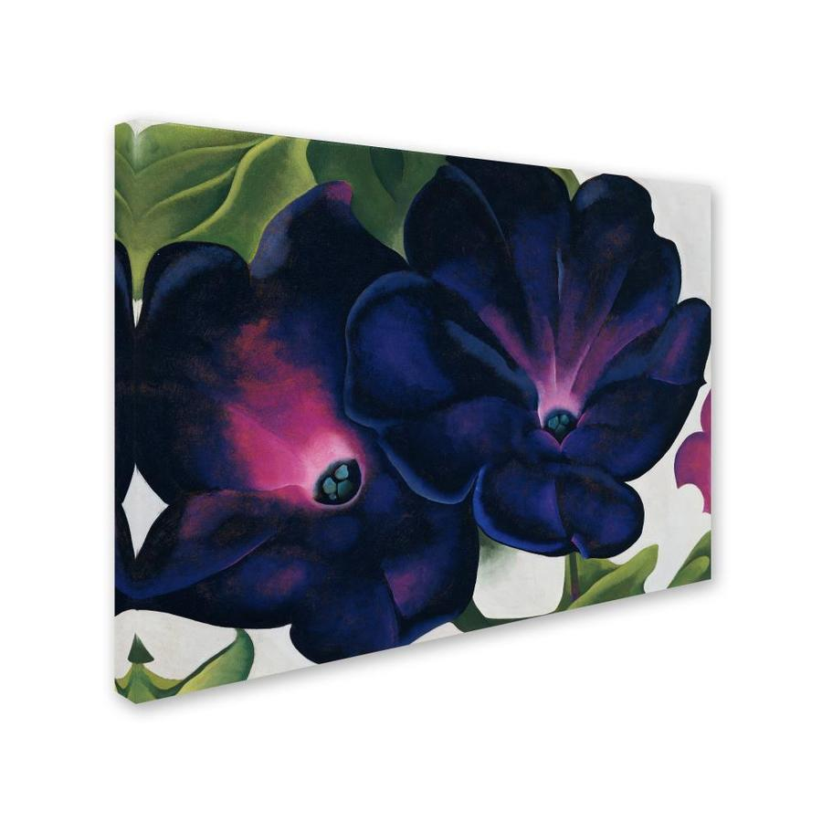 Trademark Fine Art Floral Framed 35 In H X 47 In W Floral Canvas Print In The Wall Art Department At Lowes Com