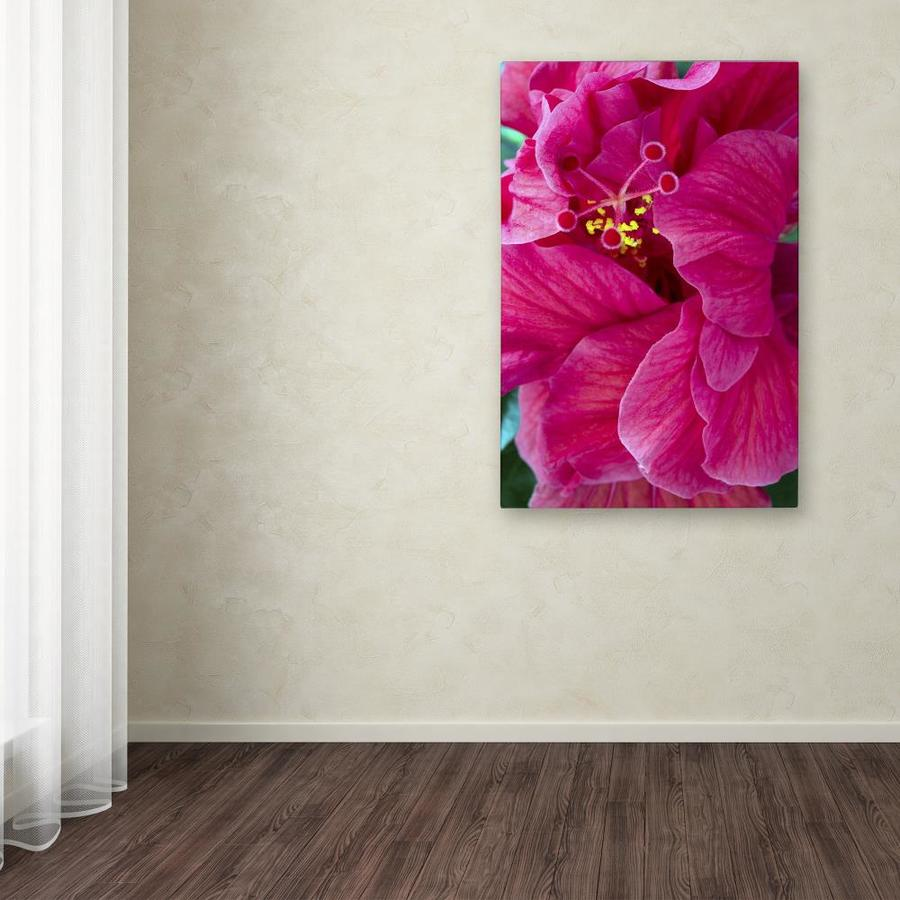 Trademark Fine Art Kurt Shaffer Hibiscus Love 30x47 Canvas Art In The Wall Art Department At Lowes Com