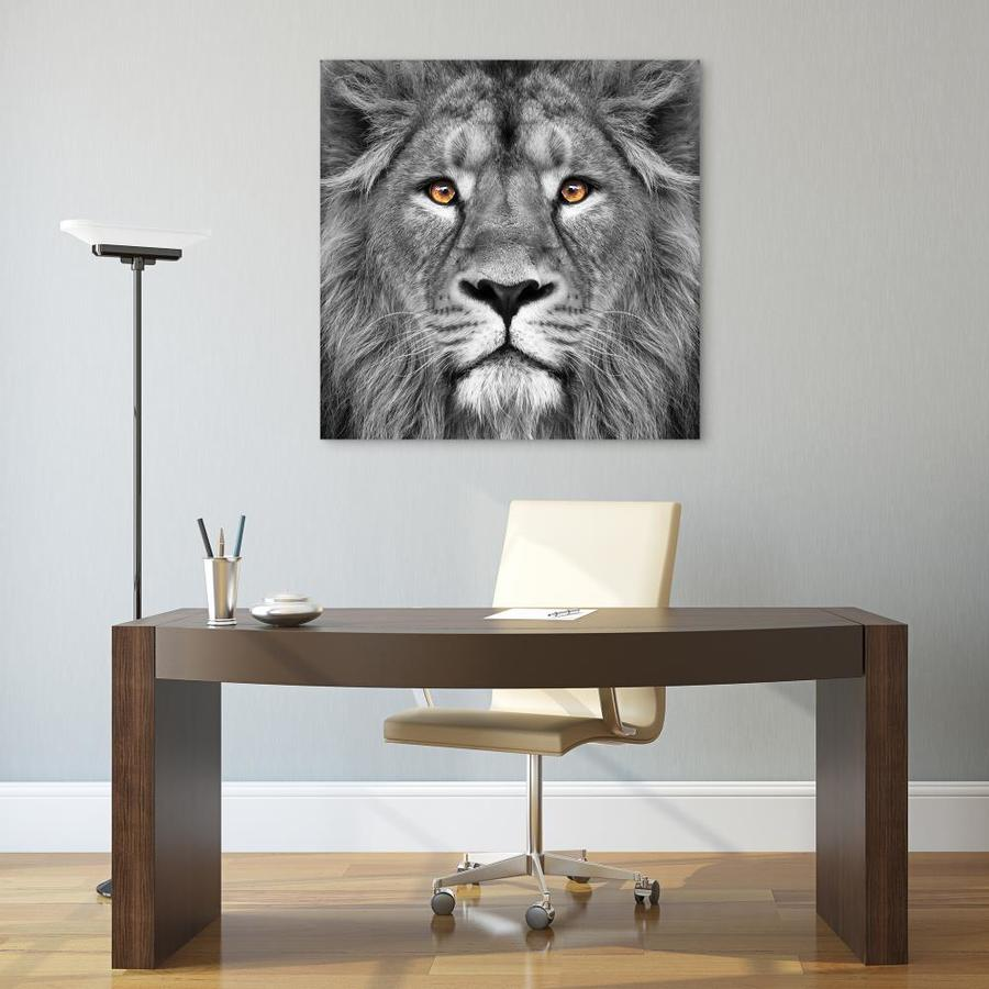 Empire Art Direct Wall Art 38 X 38 King Of The Jungle Lion Frameless Free Floating Tempered Glass Panel Graphic Wall Art In The Wall Art Department At Lowes Com