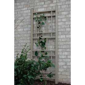 Dura-Trel Wellington 6.25-ft. Vinyl Wall Trellis - Mocha