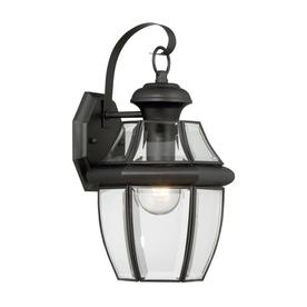 Display Product Reviews For Brayden 14.13 In H Mystic Black Outdoor Wall  Light