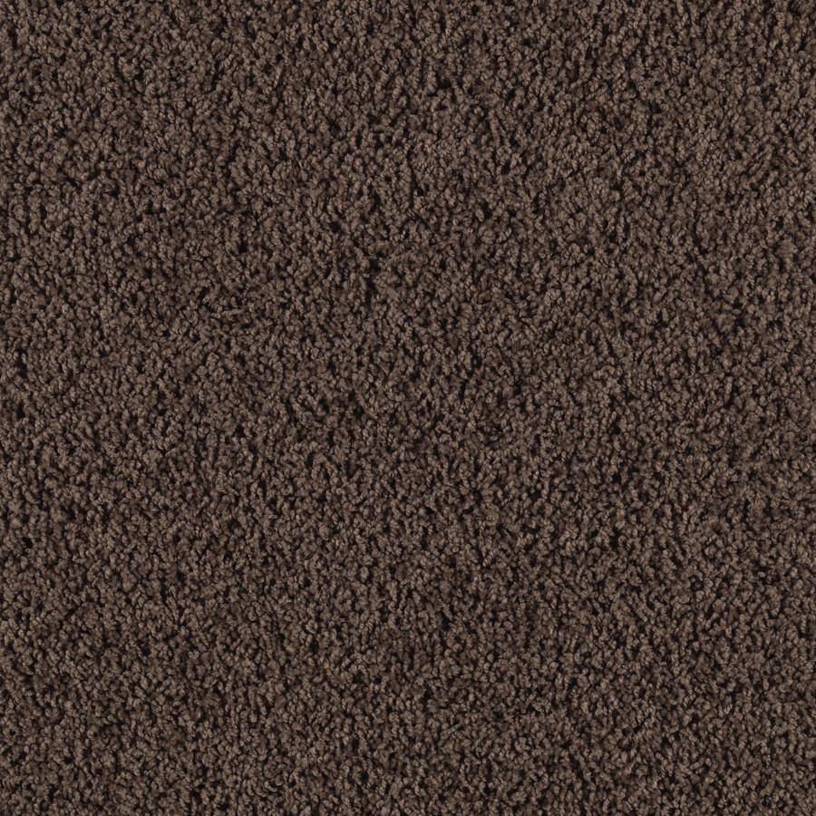 Shop Smartstrand Bartley Kodiak Frieze Indoor Carpet At