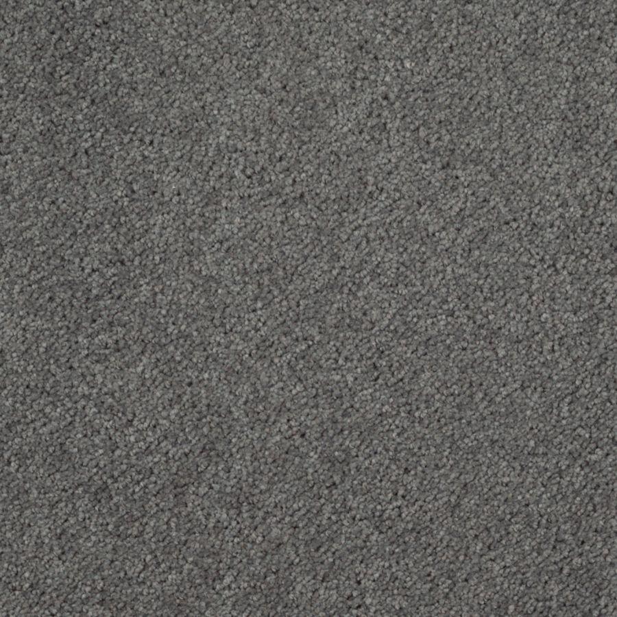 What Colour Carpet Would You Get Miscellaneous