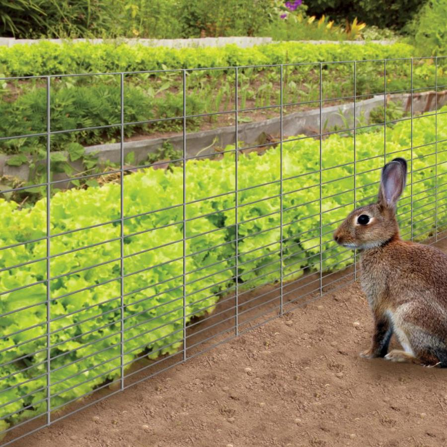 fence for rabbits