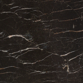 Bedrosians Brown Polished Marble Floor and Wall Tile (Common: 12-in x 12-in; Actual: 12-in x 12-in) STNLAURENT1212