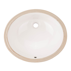 Aquasource White Drop In Oval Bathroom Sink With Overflow Ml 20504 Price Tracking