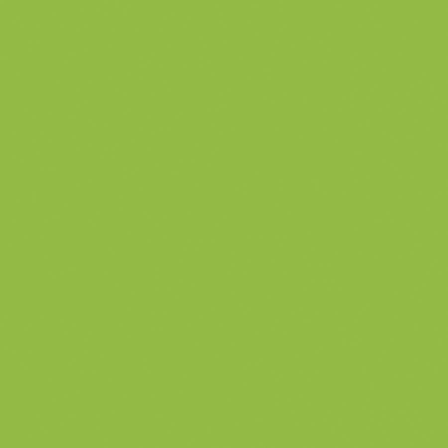 Green Laminate: Shop Formica Brand Laminate Vibrant Green- Matte Laminate
