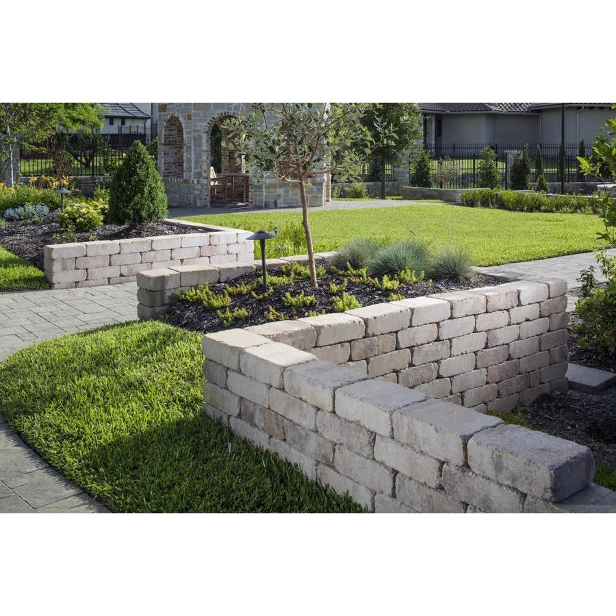 Belgard Weston 12 In L X 4 In H X 8 In D Concrete Retaining Wall Block In The Retaining Wall Block Department At Lowes Com