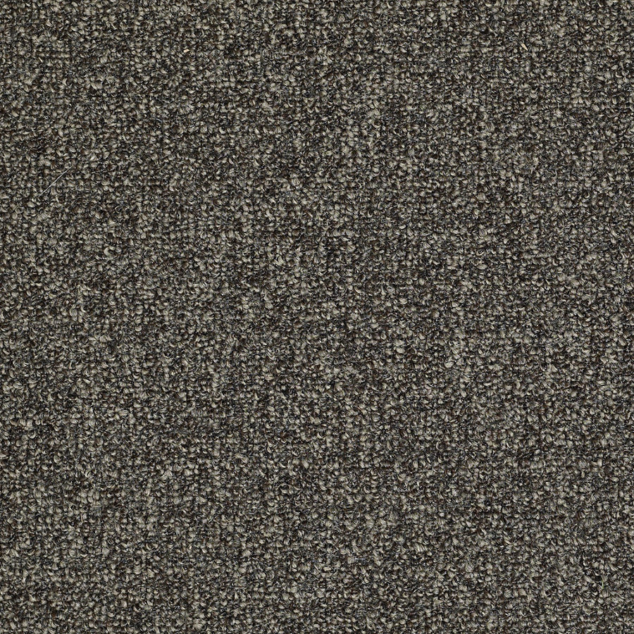 Shop Shaw Casual Breeze Flagstone Outdoor Carpet At Lowes Com