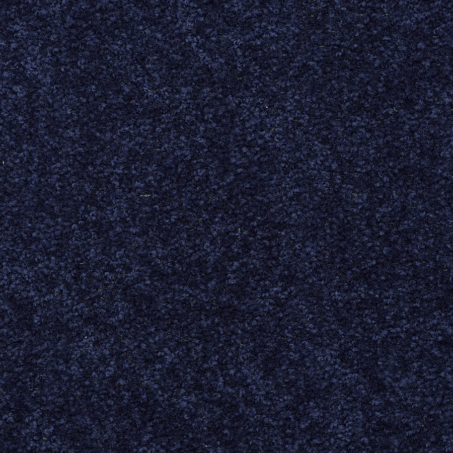 Shop Shaw 12 Sedona Rr Blue Textured Indoor Carpet At