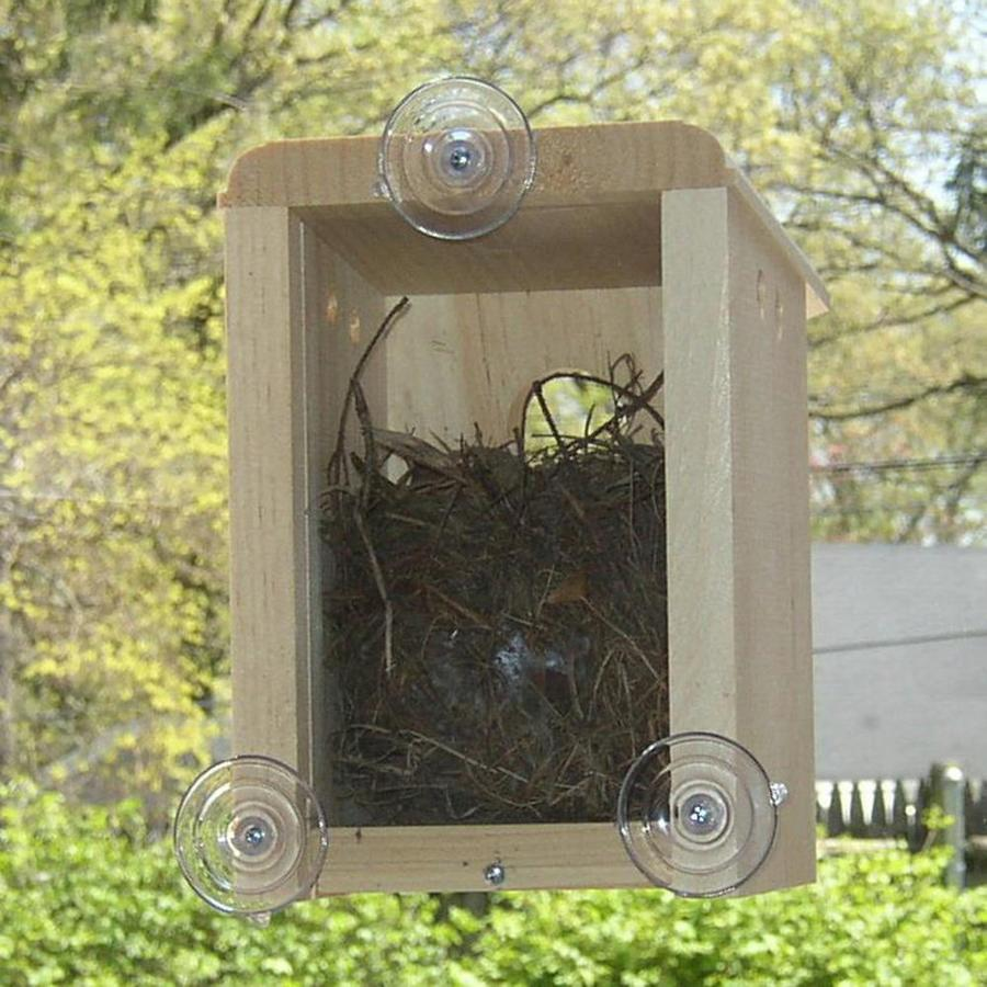 Coveside Conservation 9-In H Unfinished Pine Wood Variety Nesting Box Bird House 10010