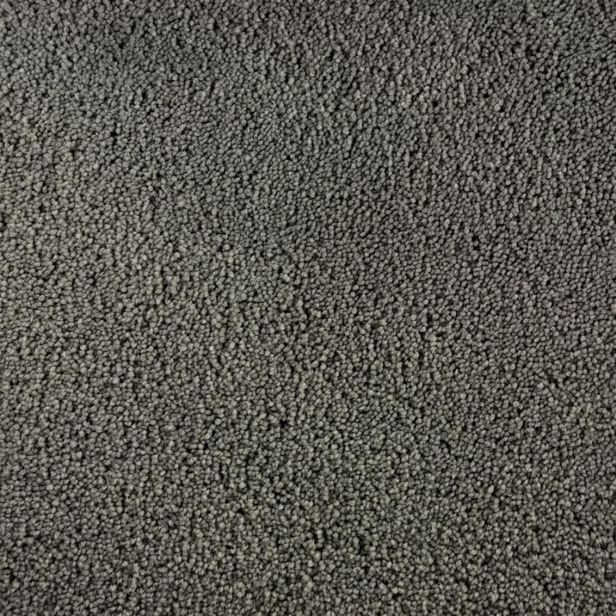 Saxony Carpet Related Keywords Amp Suggestions Saxony
