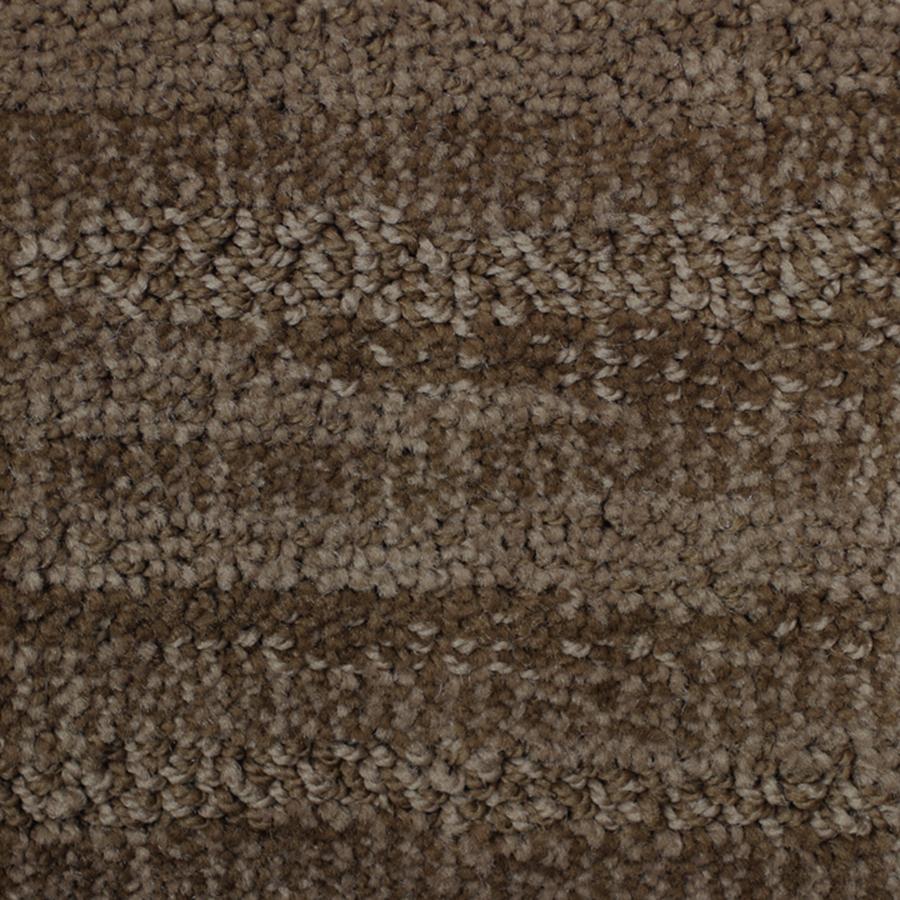 Shop Lexmark Carpet Mills Four Seasons Hot Fudge Cut And