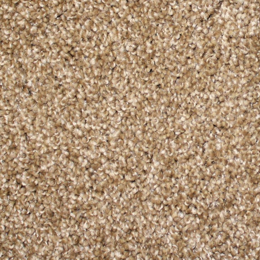 Shop Stainmaster Stock Carpet Brown Textured Indoor Carpet