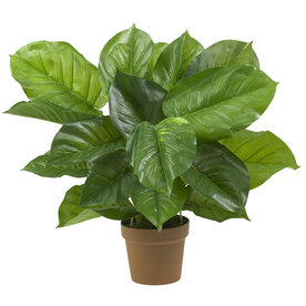 Nearly Natural 27-In Green Silk Plant 6582