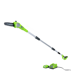 Greenworks 24-Volt Lithium Ion 8-In Cordless Electric Pol...