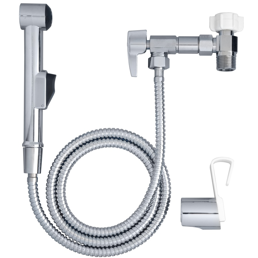Shop Aquaus Chrome Toilet Mounted Bidet At Lowes Com