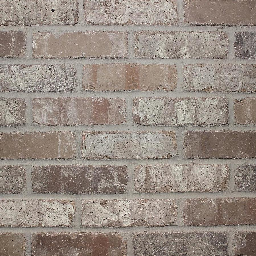 - Old Mill Thin Brick Systems Colonial Rushmore 2.25-in X 7.625-in